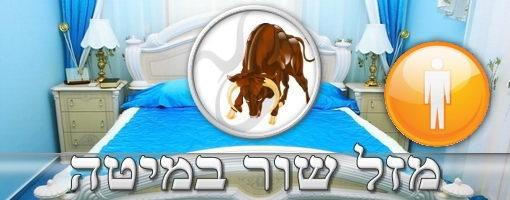 Taurus Man in Bed